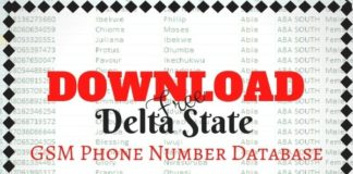 Download Free Delta State GSM Phone Number Database kongashare