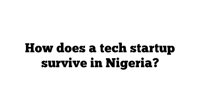 How does a tech startup survive in Nigeria?